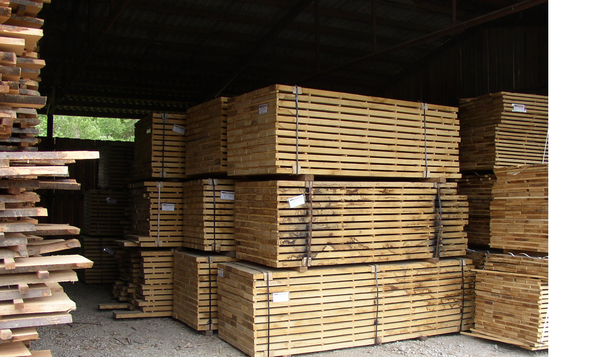 timber air drying warehouse